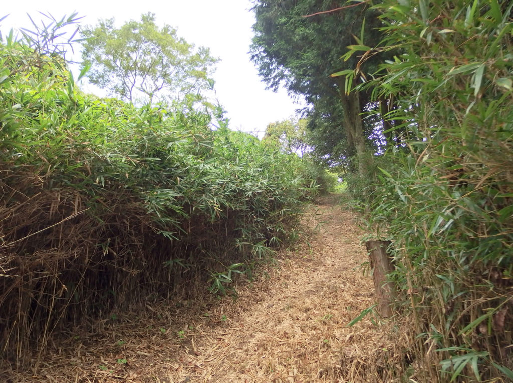 trail02