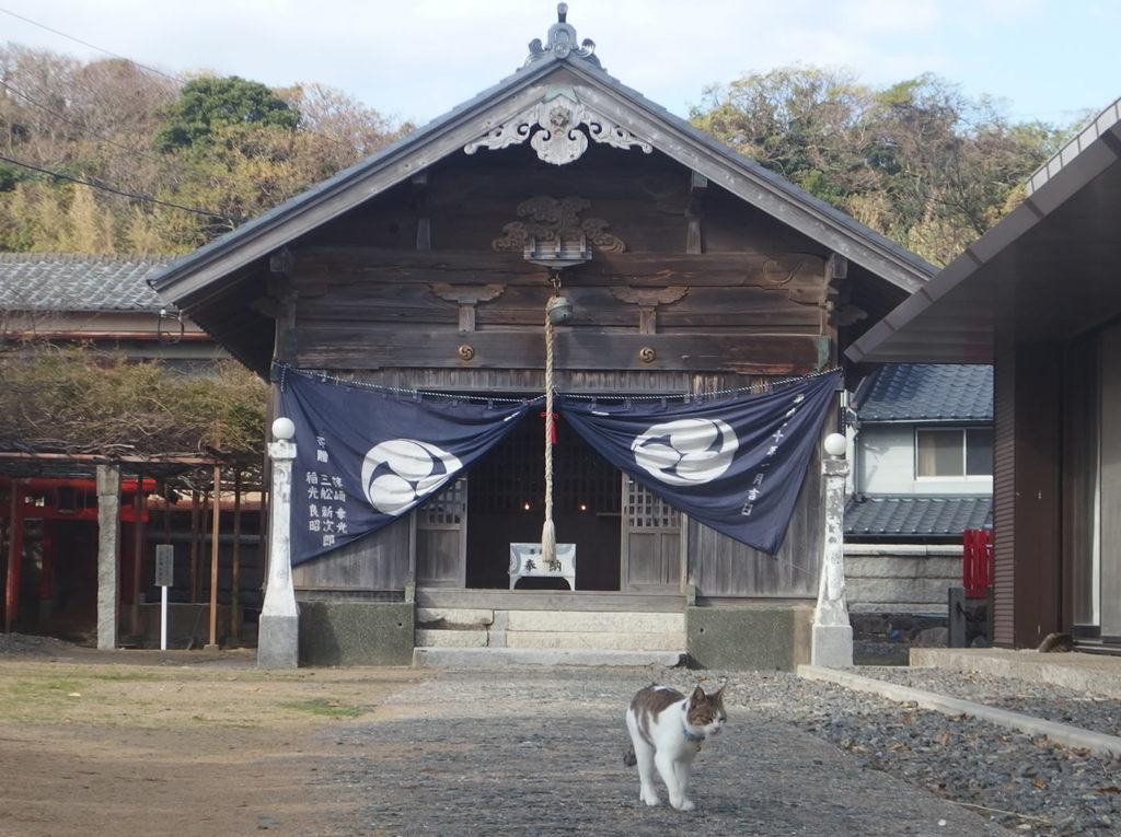 ainoshima209
