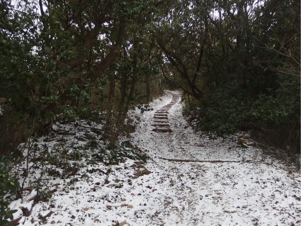 snowtrail01