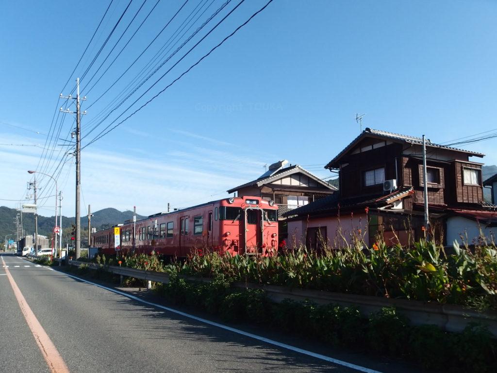 tsunoshima02