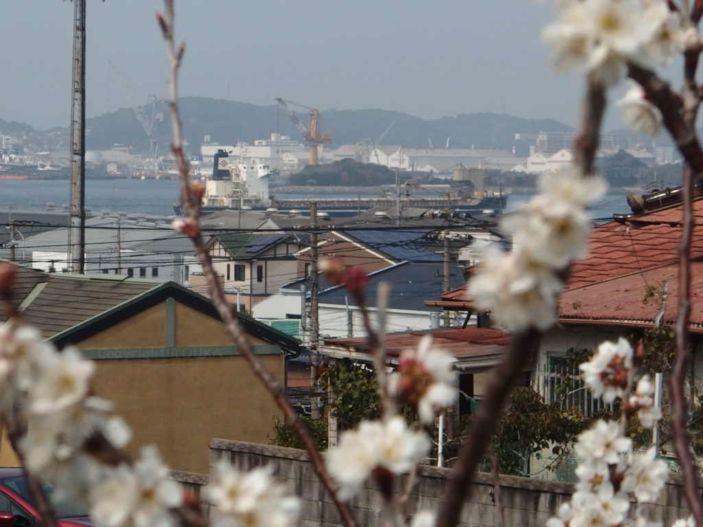 spring2019-02