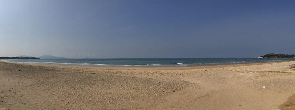 beach99