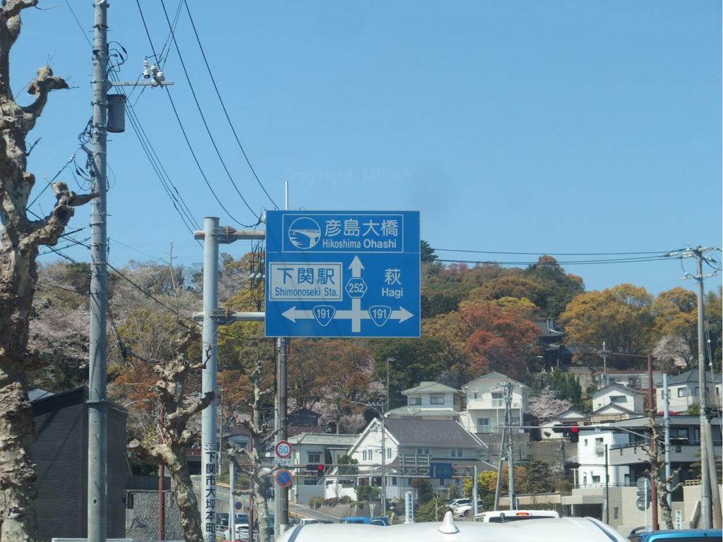 sakurahikoshima05
