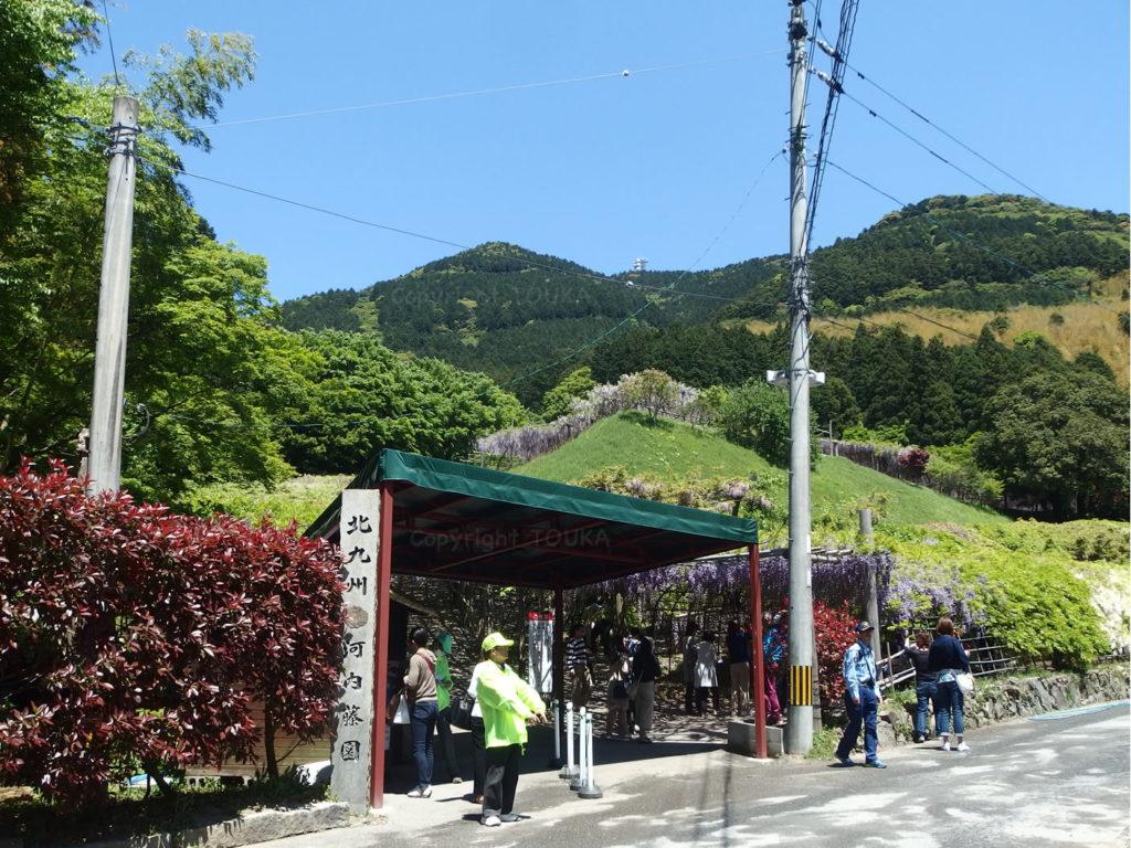 kawachifuji2019-06