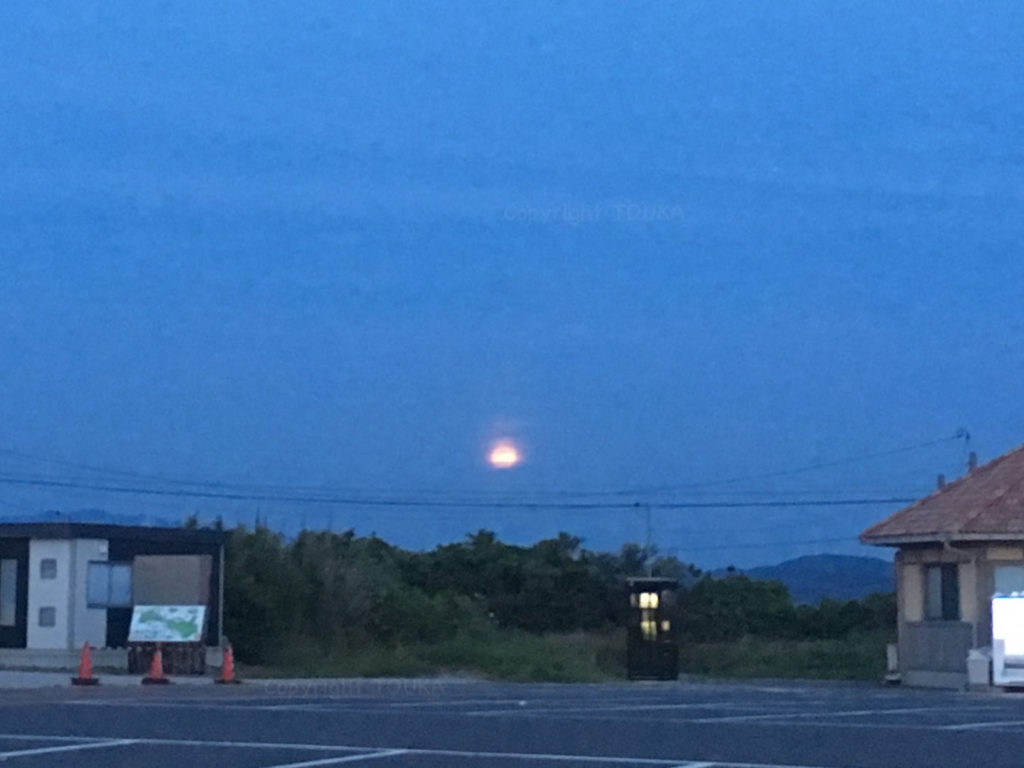 strawberrymoon06