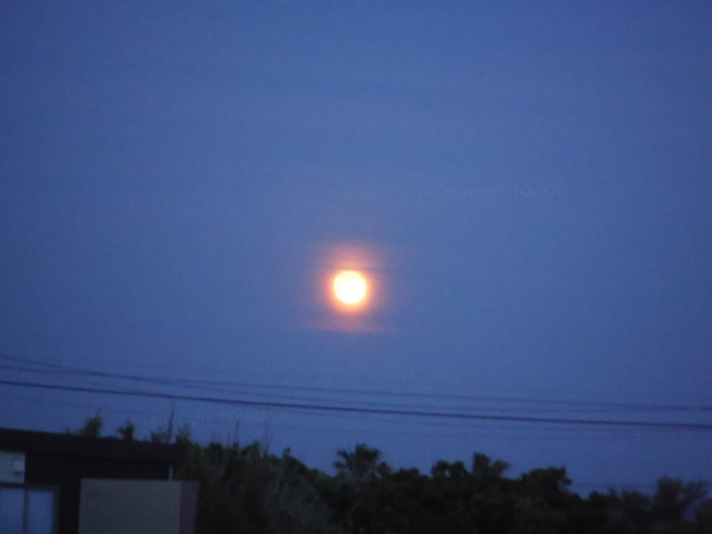 strawberrymoon07
