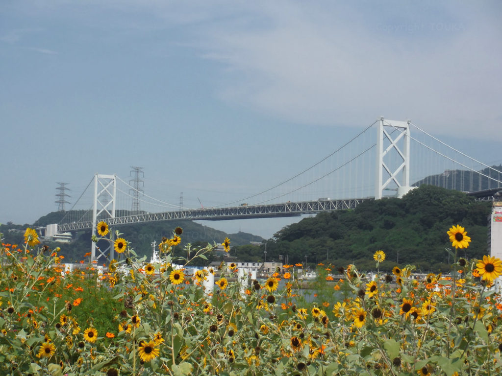 bridgeandflower01