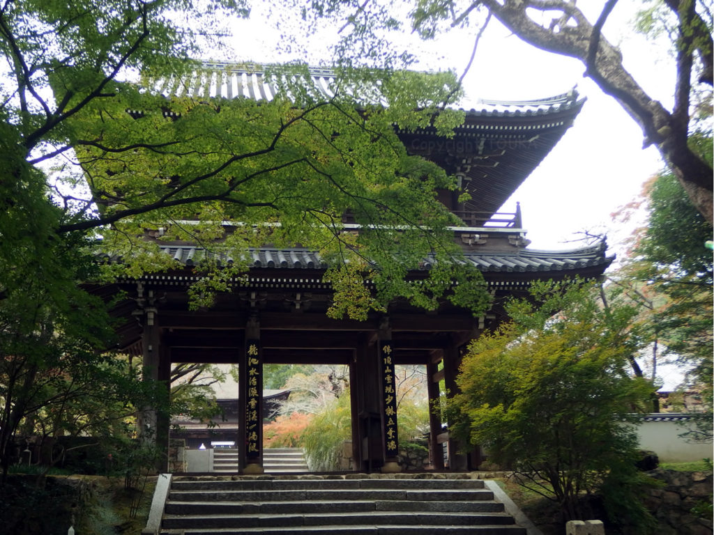 chofu2019-01