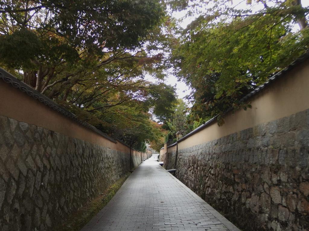 chofu2019-03