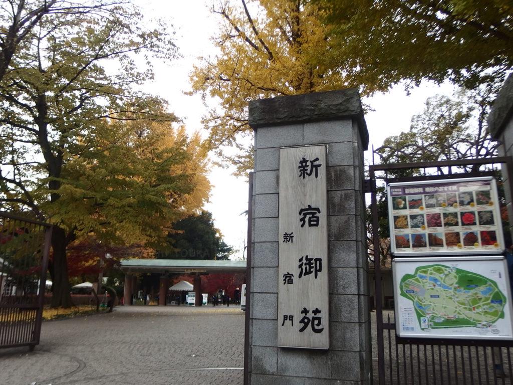 shinjukugyoen02