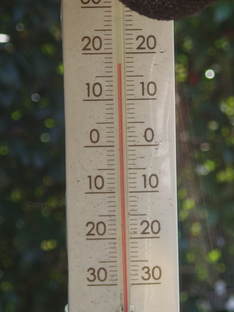 warmfebruary02