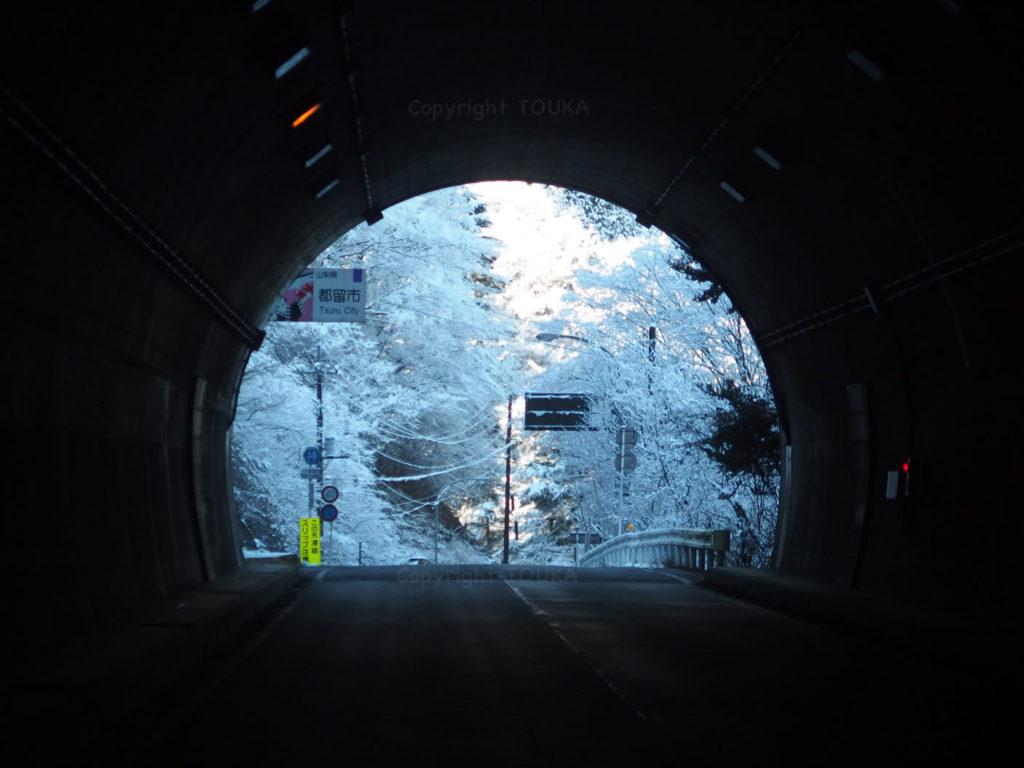 snowyfishing01
