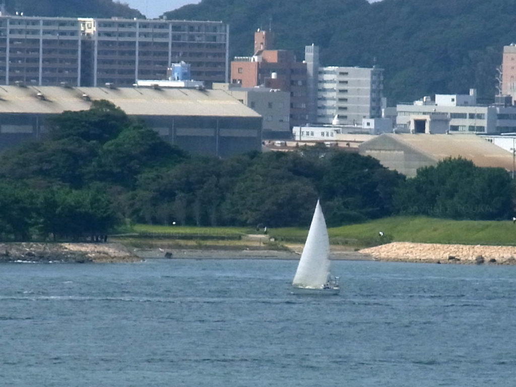 sailingboat12
