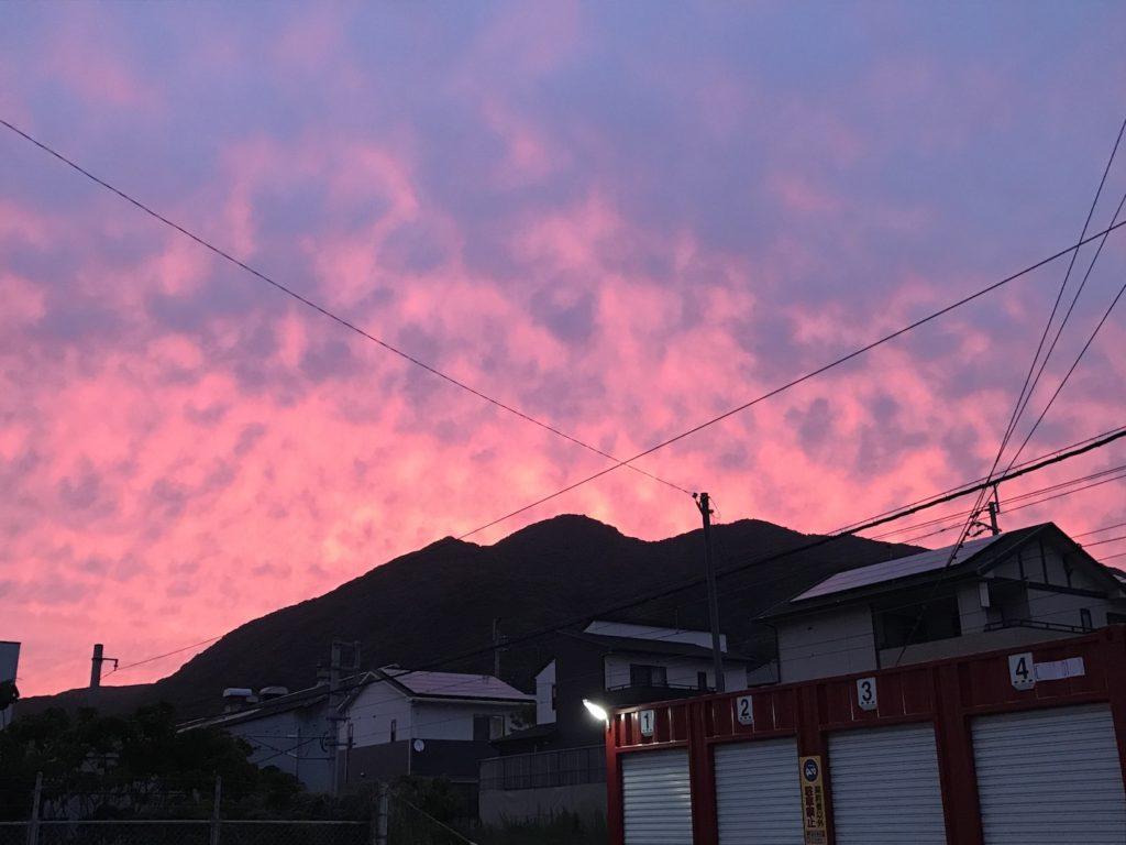morningglow01